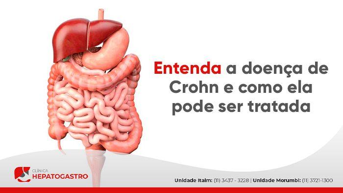 A imagem mostra uma representação gráfica do sistema digestivo.