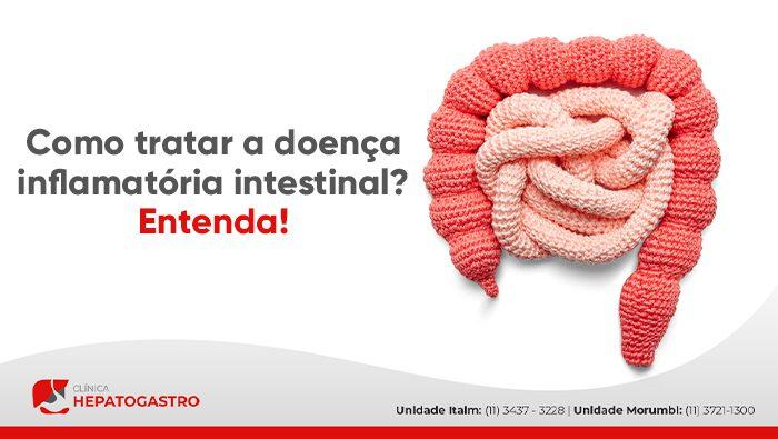 A imagem mostra uma representação do intestino grosso e delgado feitos de tecido.