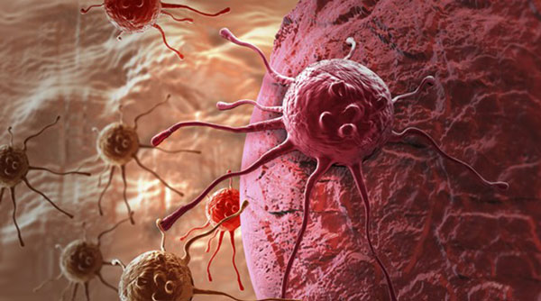 foto-blog-HEP-hepatogastro