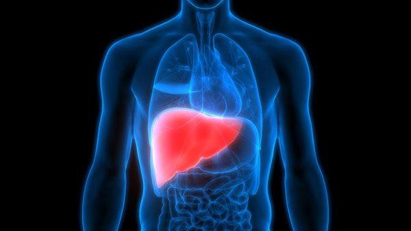 hepatico-hepatogastro