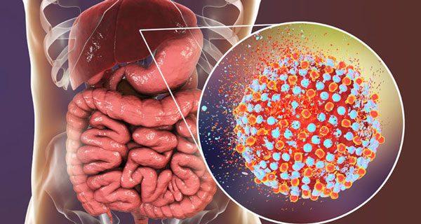 Hepatitec-Hepatogastro