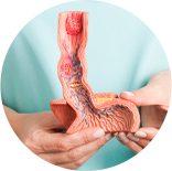 Icone Cirurgia de Refluxo | Ícone Hepatogastro